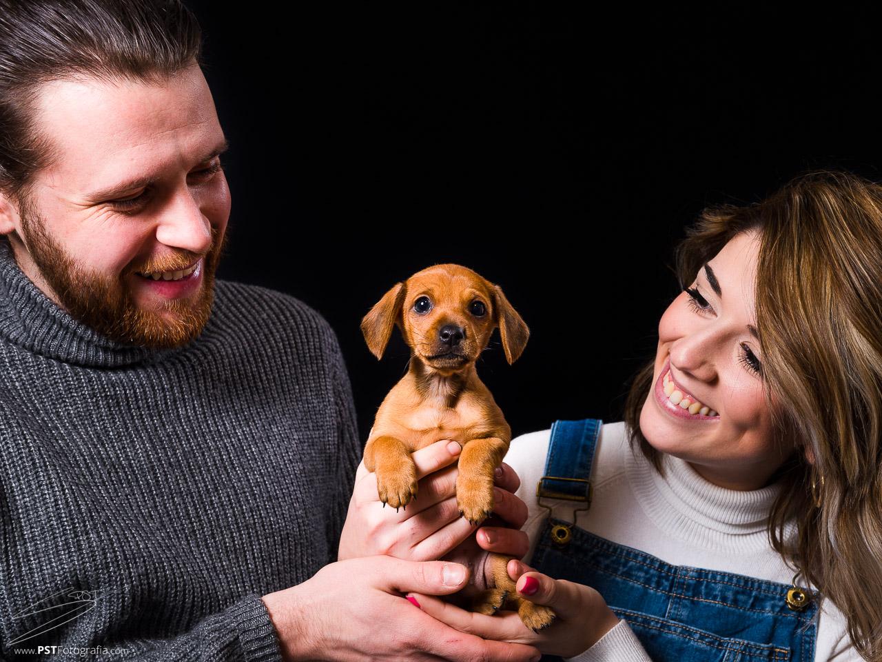 Fotografía de mascotas en Alcoy