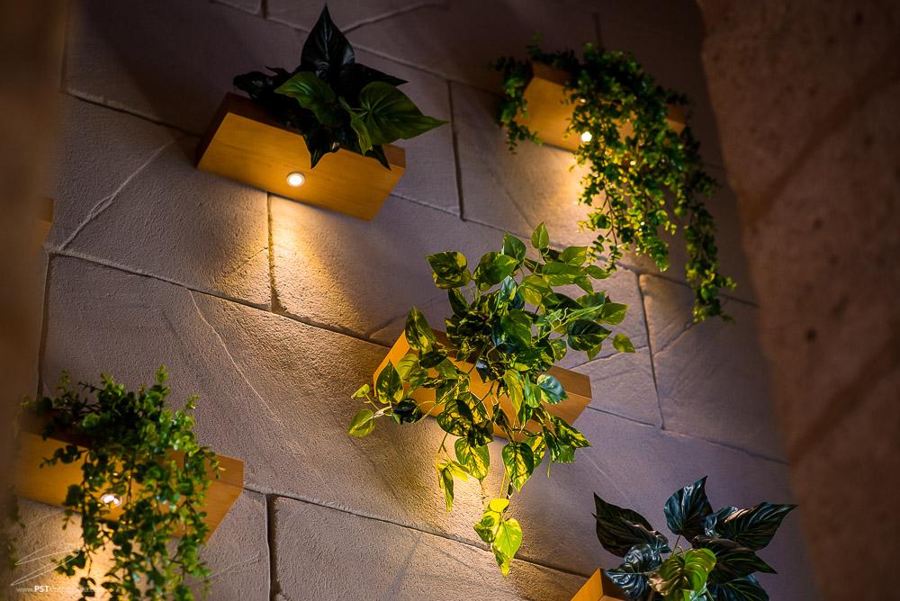 Las plantas son un elemento decorativo muy utilizado en La Maraña. PSTFotografía